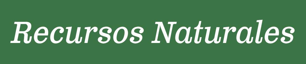 Usted se encuentra en la página de Recursos Naturales, use esta navegación para ver otras páginas de áreas de enfoque